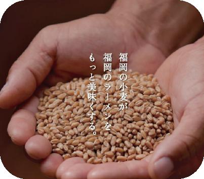 福岡の小麦が福岡のラーメンをもっと美味しくする
